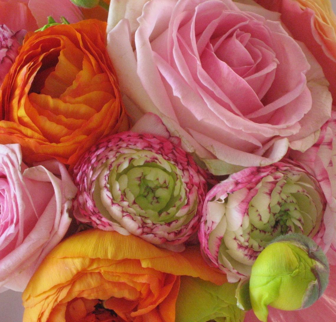 bloemen-degroote